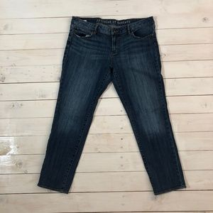 ARTICLES OF SOCIETY Low Rise Denim Skinny Jeans